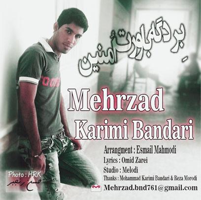 Mehrzad Karimi